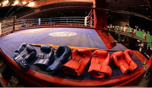 IABA Boxers On A Roll